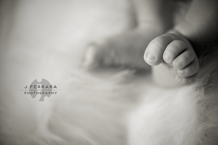 Infant Photography, hudson valley baby photographer